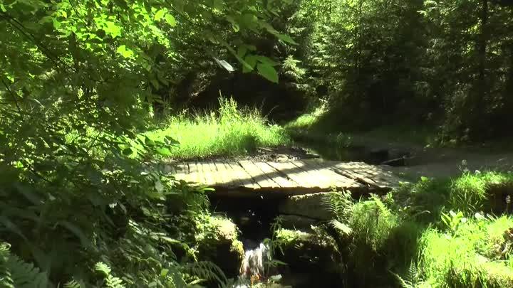 U Lesního koupaliště v Liberci vznikne nová Tichá stezka