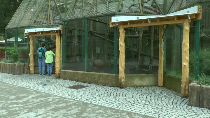 V Zoo Liberec finišuje rekonstrukce dolního náměstí