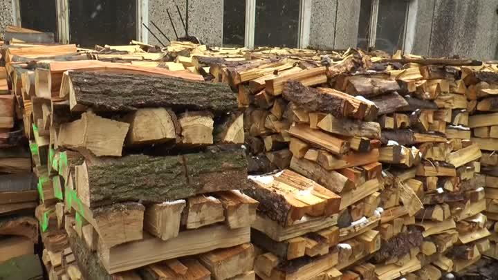 Jaro je nejvhodnější období na nákup topného dřeva