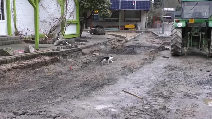 V Zoo Liberec probíhá rozsáhlá rekonstrukce chodníků