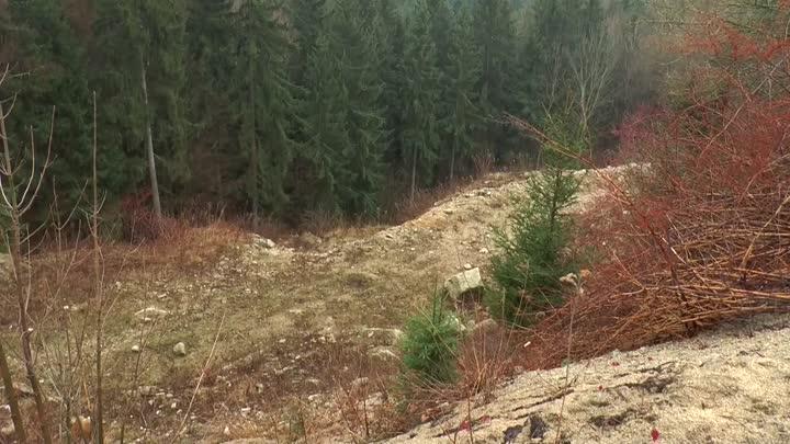 Liberec řeší rekultivaci skládky v lomu Ruprechtice
