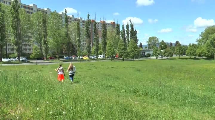 Liberec chce vytvořit tůňky v Ruprechticích